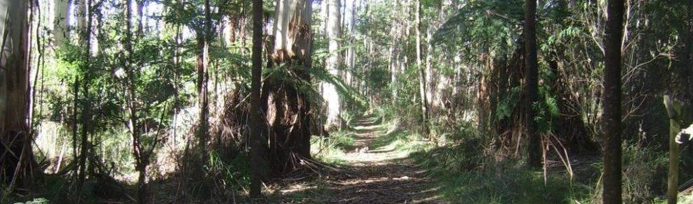 Butterfield Conservation Reserve