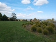 Johns Hill Reserve Lookout 08