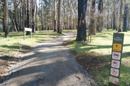 one tree hill picnic ground 14
