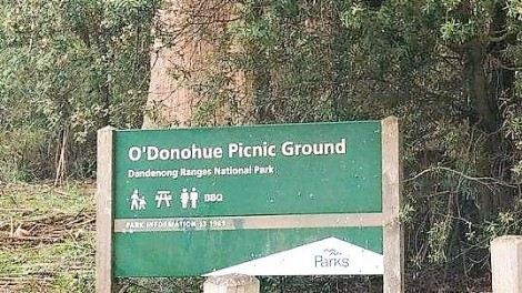 ODonohue Picnic Ground-featured