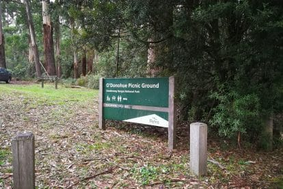 O'Donohue Picnic Ground 1