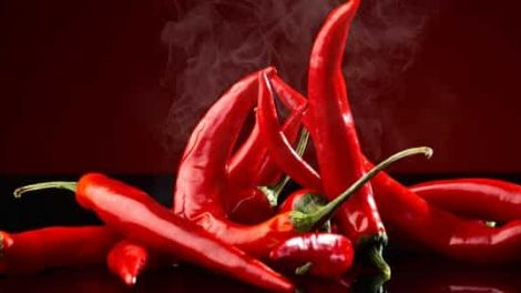 The Herb And Chilli Festival