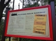 Puffing Billy 12