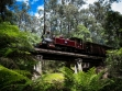 Puffing Billy 43